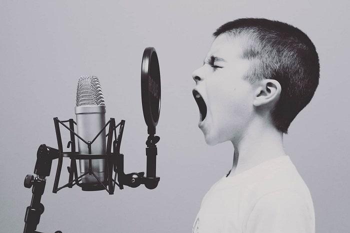 https://jabali-coaching.de/wp-content/uploads/2017/02/Vocal.jpg