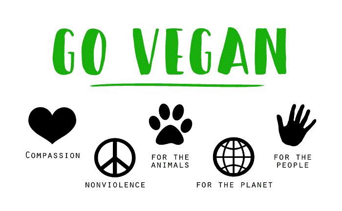 https://jabali-coaching.de/wp-content/uploads/2019/05/vegan-1343429_1280.png